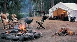 Obtenga los artículos necesarios para hacer una fogata en el terreno de acampada